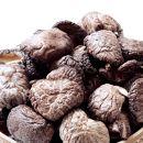 大分県産中玉どんこ椎茸300g原木栽培干し椎茸訳あり肉厚