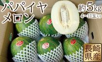 長崎県産 パパイヤメロン 約5kg(4玉~11玉入り)【2019年4月~5月より発送開始】