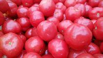 ◇【数量限定】さくらんぼトマト200g×4P