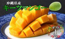 【ギフト】沖縄県産キーツマンゴー約1㎏