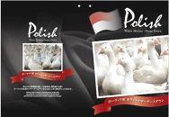ポーランド産ホワイトマザーグースダウン95%の最高級羽毛(1.5㎏)使用 ツインキルト羽毛掛布団ダブル(ピンク系/柄お任せ)