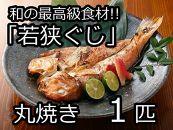 和の最高級食材「若狭ぐじ」丸焼き1匹