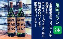 葡萄畑プロジェクト待望の白ワイン! 亀岡ブラン2本セット