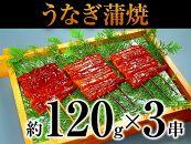 ※取扱終了※『総重量約360g以上』静岡県産うなぎ蒲焼串3串入り