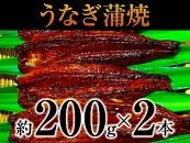 特大うなぎ蒲焼(約200g)2本