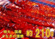 うなぎの蒲焼き特大サイズ(約210g)