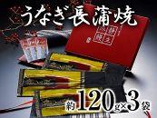 静岡産うなぎ長蒲焼「静生旅鰻」UNR123