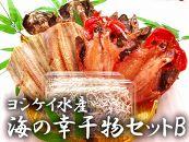 ヨシケイ水産海の幸干物セットB