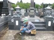 「お墓」のお掃除代行サービス年3回