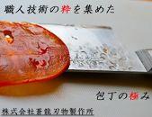 V10スペシャル三徳包丁170㎜