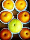 北條農園の梨の味比べ 中箱
