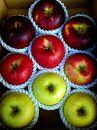 北條農園のりんごの味比べ 中箱