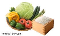 【年3回お届け】減農薬無化学肥料栽培 季節の野菜とコシヒカリ2㎏