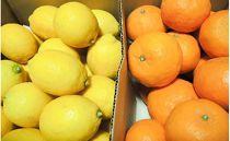 瀬戸田レモン3kgと、季節の柑橘2kg詰め合わせ