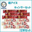 苺アイスキャンデーセット 12本セット/久保田食品/アイス