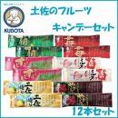 土佐のフルーツキャンデーセット 12本セット/久保田食品/アイス