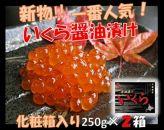 【期間・数量限定】新物!いくら醤油漬250g×2箱