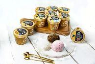 あいすの家 アイスクリーム10種セット(120ml×10個)