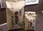 雪室貯蔵【玄米】特別栽培南魚沼産こしひかり5kg【飯塚農園】