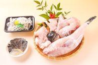【若男水産】【淡路島3年とらふぐ】丸ごと1匹身欠き!