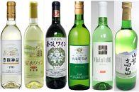 C113辛口白ワイン6本セット
