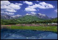 勝山のお米「コシヒカリ」 定期便 3か月に1回5kg発送プラン