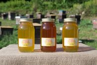 みずなみ高原で採れた天然無添加非加熱の熟成ハチミツ(山桜1kg×1 アカシア1kg×1 ソヨゴ1kg×1)