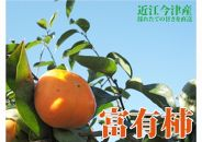 ◆【2018年産・旬の発送予約】近江今津の富有柿2L4kg1箱12玉<生産者直売一貫体制>
