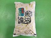 【30年産】南魚沼産コシヒカリ無洗米5kg