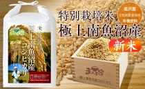 H30新米【頒布会】特別栽培米「極上南魚沼産コシヒカリ」(有機肥料、8割減農薬栽培)玄米10kg×全6回