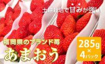 【先行予約】濃厚な甘さ!福岡県産あまおう(285g×4P)