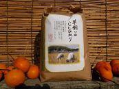 (7分搗き瀬戸内三原羊飼いのこしひかり(無肥料無農薬米)3.4kg