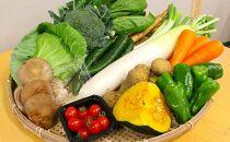 減農薬・農薬不使用で栽培した季節の野菜セット11~13品