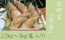 【緊急支援品】京野菜「京筍」採れ採れ発送(特選上物2.5~3kg+500g増量)※3月下旬頃から順次発送予定