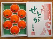 【化粧箱】『柑橘の大トロ』ハウスせとか厳選大玉7玉入