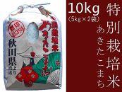 あきたこまち「特別栽培米あきたこまち10kg」仙北こまちの会