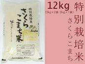 あきたこまち「特別栽培米さくらこまち12kg」中仙さくらファーム
