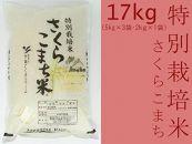 あきたこまち「特別栽培米さくらこまち17kg」中仙さくらファーム