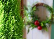 クリスマスツリー&リースセット「クリスマスキャロル」大切な人と大切な時間を過ごすとっておきのプレゼント<LotusGarden>