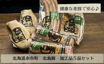 北島農場「北島豚」加工品5品セット
