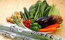 季節の地元野菜詰め合わせセット(年1回)