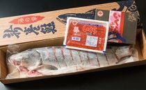 【数量限定】オホーツク秋鮭切身姿造りと魚卵セット(網走加工)