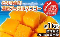 【2019年7月~発送・沖縄県産】とろける食感!濃密アップルマンゴー約1kg(2~3玉)