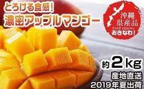【2019年7月~発送・沖縄県産】とろける食感!濃密アップルマンゴー約2kg(4~6玉)