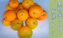 【2021年発送分】果物屋さんの特選フルーツ詰め合わせ