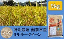 【玄米】特別栽培 越前市産ミルキークイーン 5kg