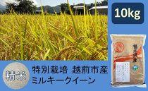 【精米】特別栽培 越前市産ミルキークイーン 10kg