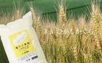 パンや餃子にもおススメ!もちもち触感がやみつきに『キタノカオリ小麦粉』1kg×12袋