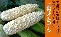 【2019年発送】北海道の太陽をいっぱい浴びたトウモロコシ「ホワイトコーン」10本前後混)