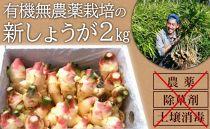 AC62-C【有機無農薬栽培】土からこだわった新生姜(2kg)